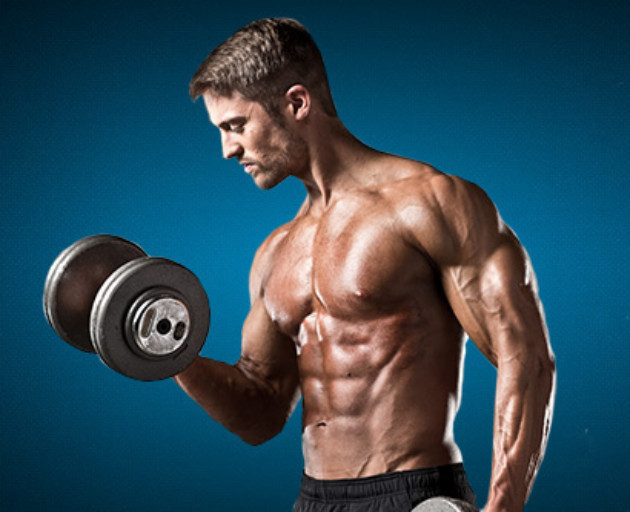 muscle banner